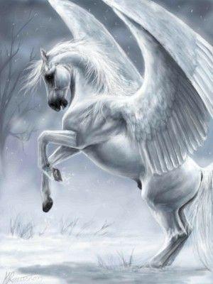 Un god de cheval la fait jouir 2 1